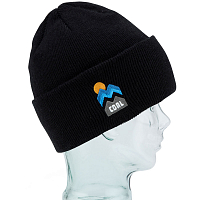 Coal THE DONNER BEANIE BLACK