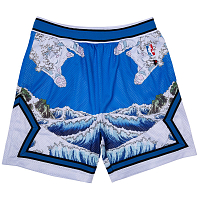 RIPNDIP GREAT WAVE MESH BASKETBALL SHORTS BLUE